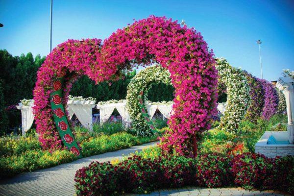 Miracle Garden à Dubaï