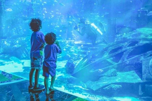 Zoo sous marin de Dubaï